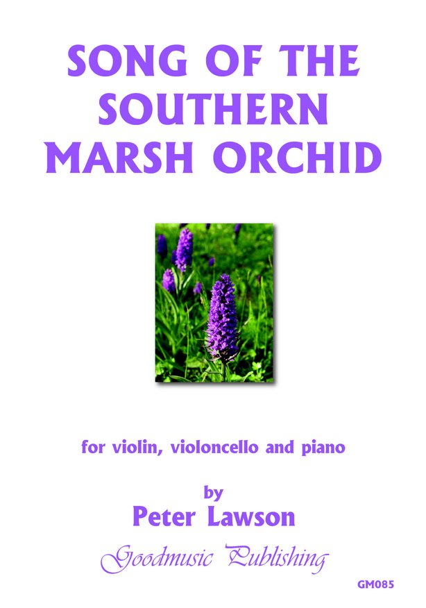 Song of the Southern Marsh Orchid image