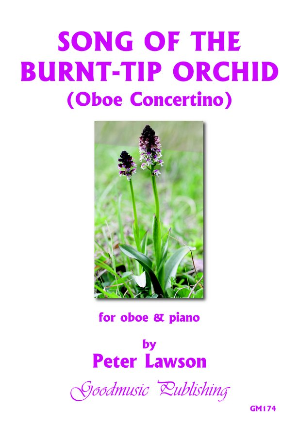 Song of the Burnt-Tip Orchid image